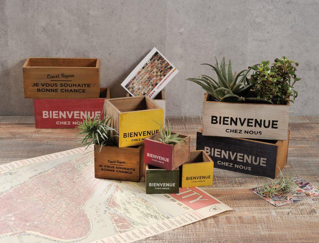 7色で色どりを!とってもかわいい木製の小物ボックス!多肉や苗ポットに最適です♪
